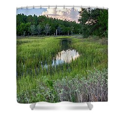 Cloud Over Marsh Shower Curtain by Patricia Schaefer