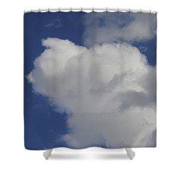 Cloud Trol Shower Curtain
