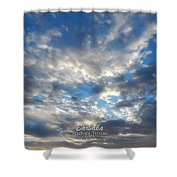 Clouds #4049 Shower Curtain by Barbara Tristan