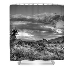 Clouds And Yucca Shower Curtain