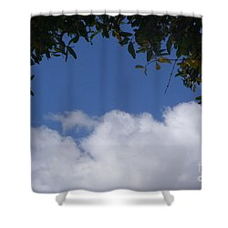 Shower Curtain featuring the photograph Clouds Framed By Tree by Nora Boghossian