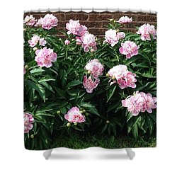 Clouds Of Peony Shower Curtain
