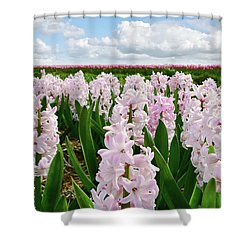 Clouds Over The Pink Hyacinth Field Shower Curtain by Mihaela Pater