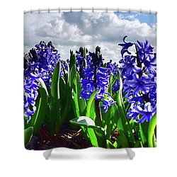 Clouds Over The Purple Hyacinth Field Shower Curtain by Mihaela Pater