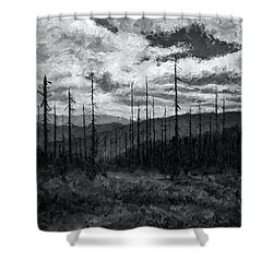 Cloudscape 3 Shower Curtain