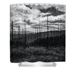 Cloudscape 3 Shower Curtain