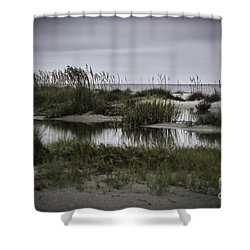 Cloudy Beach Day Shower Curtain by Judy Wolinsky