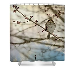 Shower Curtain featuring the photograph Cloudy Finch by Trish Tritz