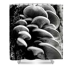 Clumps Shower Curtain