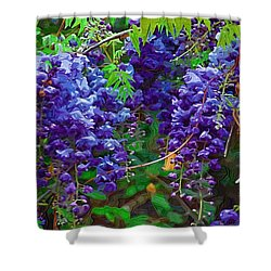 Shower Curtain featuring the photograph Clusters Of Wisteria by Donna Bentley