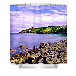 Rocky Coast At Howth Shower Curtain