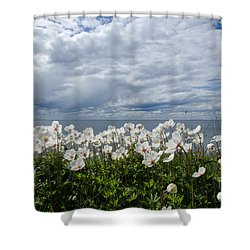 Coastal Backlit Anemones Shower Curtain