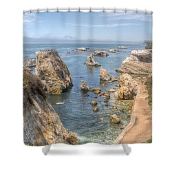 Coastal California Shower Curtain by Kristina Rinell