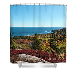 Coastal Color Shower Curtain