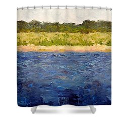 Shower Curtain featuring the painting Coastal Dunes - Square by Michelle Calkins