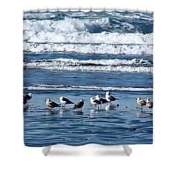 Coastal Fly-in Shower Curtain