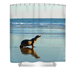 Shower Curtain featuring the photograph Coastal Friends by Everette McMahan jr