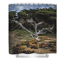 Coastal Guardian Shower Curtain