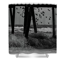 Coastal Movements Shower Curtain