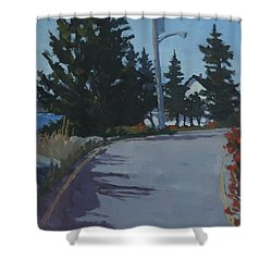 Coastal Road Shower Curtain