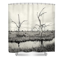 Coastal Skeletons Shower Curtain