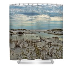 Shower Curtain featuring the photograph Coastland Wetland by Renee Hardison
