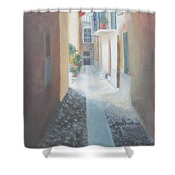 Cobblestone Alley Shower Curtain