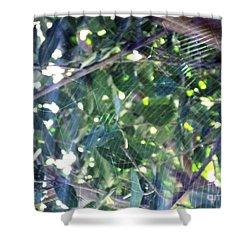 Shower Curtain featuring the photograph Cobweb Tree by Megan Dirsa-DuBois