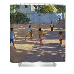 Cochin Shower Curtain by Andrew Macara