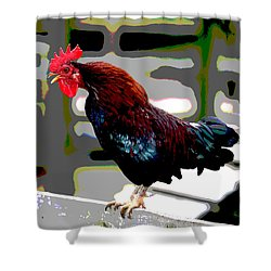 Shower Curtain featuring the mixed media Cock Crowing by Charles Shoup