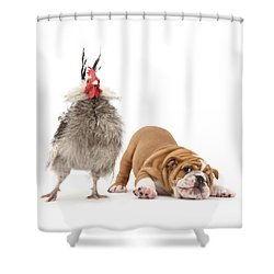 Cock N Bull Shower Curtain