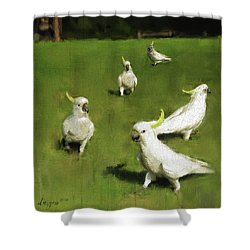 Cockatoo  Shower Curtain by Simon Sturge