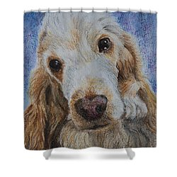 Cocker Spaniel Love Shower Curtain