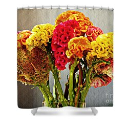 Shower Curtain featuring the photograph Cockscomb Bouquet 3 by Sarah Loft