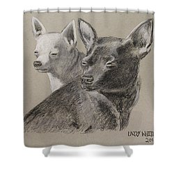 Coco And Rudy Shower Curtain