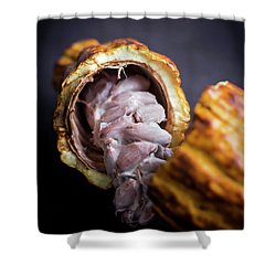 Cocoa Shower Curtain by Heather Applegate