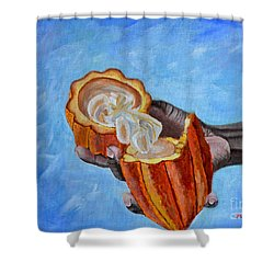 Cocoa Pod In Hand V2 Shower Curtain