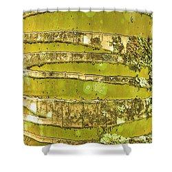 Coconut Palm Bark 1 Shower Curtain by Brandon Tabiolo - Printscapes