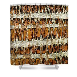 Coconut Palm Bark 3 Shower Curtain by Brandon Tabiolo - Printscapes