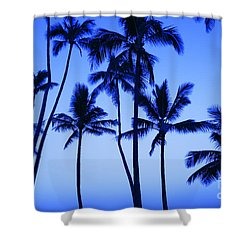 Coconut Palms At Dawn Shower Curtain by Dana Edmunds - Printscapes