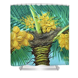 Coconut Palms Shower Curtain