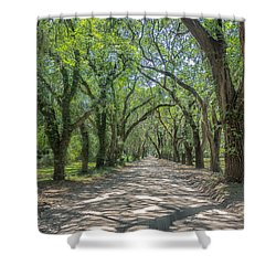 Coffin Point Shadows Shower Curtain