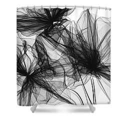 Coherence - Black And White Modern Art Shower Curtain