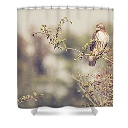 Coign Of Vantage Shower Curtain