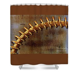 Shower Curtain featuring the photograph Coiled By Kaye Menner by Kaye Menner
