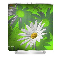 Shower Curtain featuring the photograph Cola Para El Sol by Alfonso Garcia