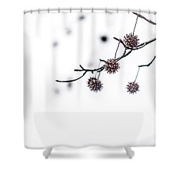 Cold And Pointy Shower Curtain