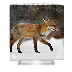 Cold As Ice - Red Fox In A Snow Blizzard Shower Curtain