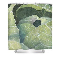 Shower Curtain featuring the painting Cold Crop by Phyllis Howard