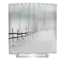 Cold Crow Shower Curtain